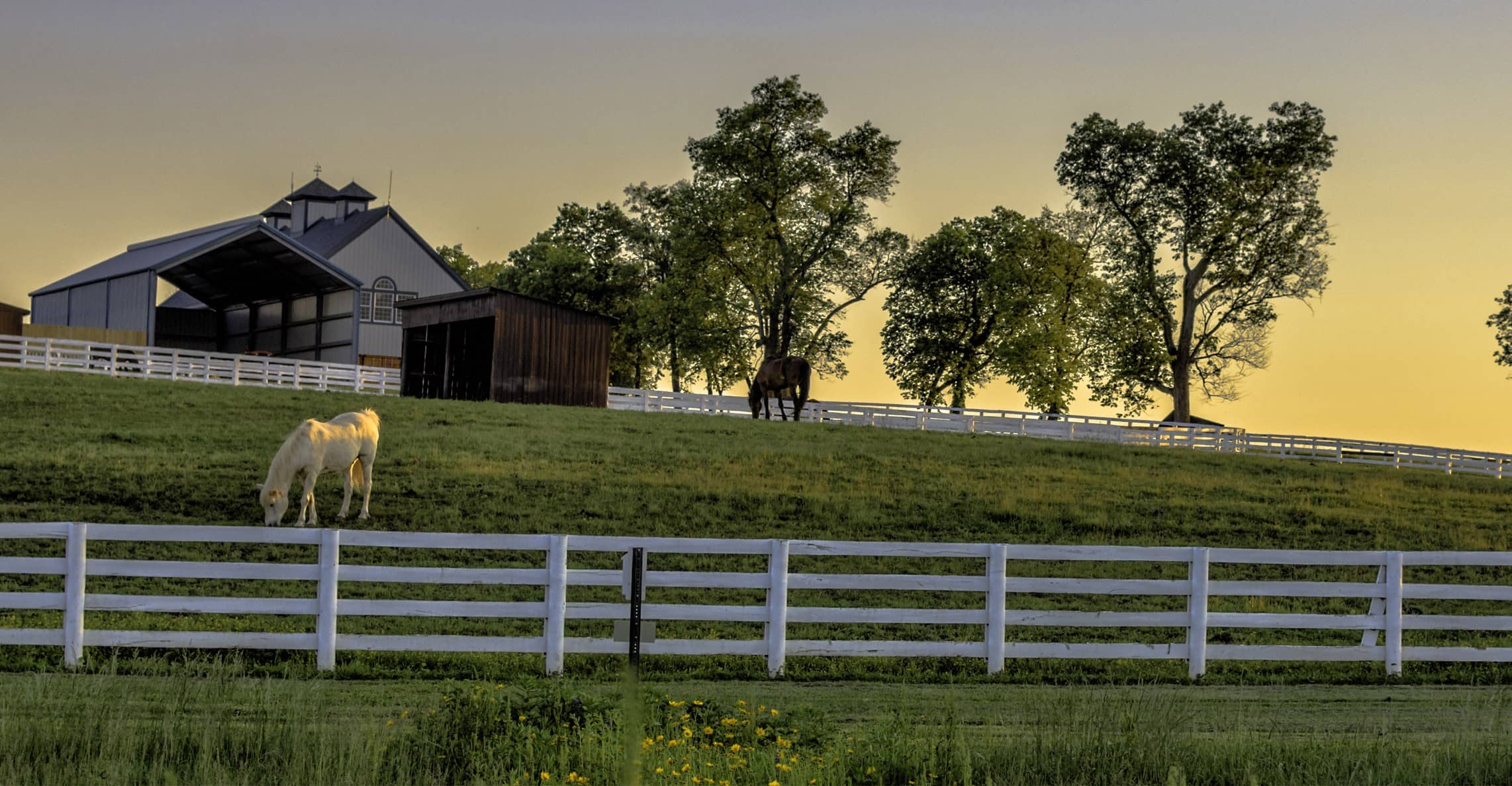 Country Homes, Farms, Ranches for Sale, Recreational Property and