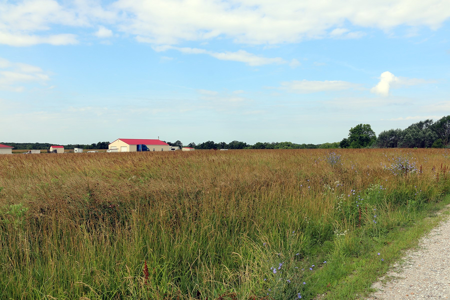 Expired 4 5 Acre Building Lot For Sale Outside Kirksville Mo