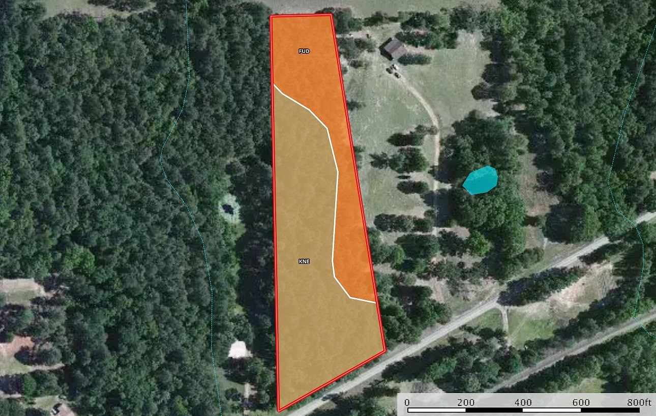 Wooded Land For Sale Anderson County Texas Near Neches Texas