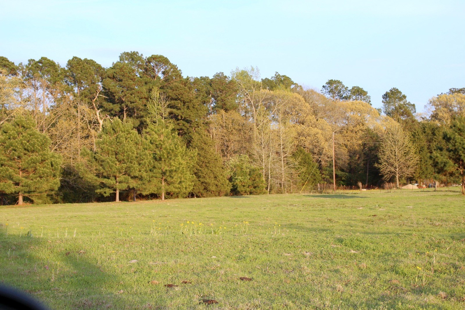 LAND FOR SALE EAST TEXAS - WOOD COUNTY ACREAGE - EAST OF DFW