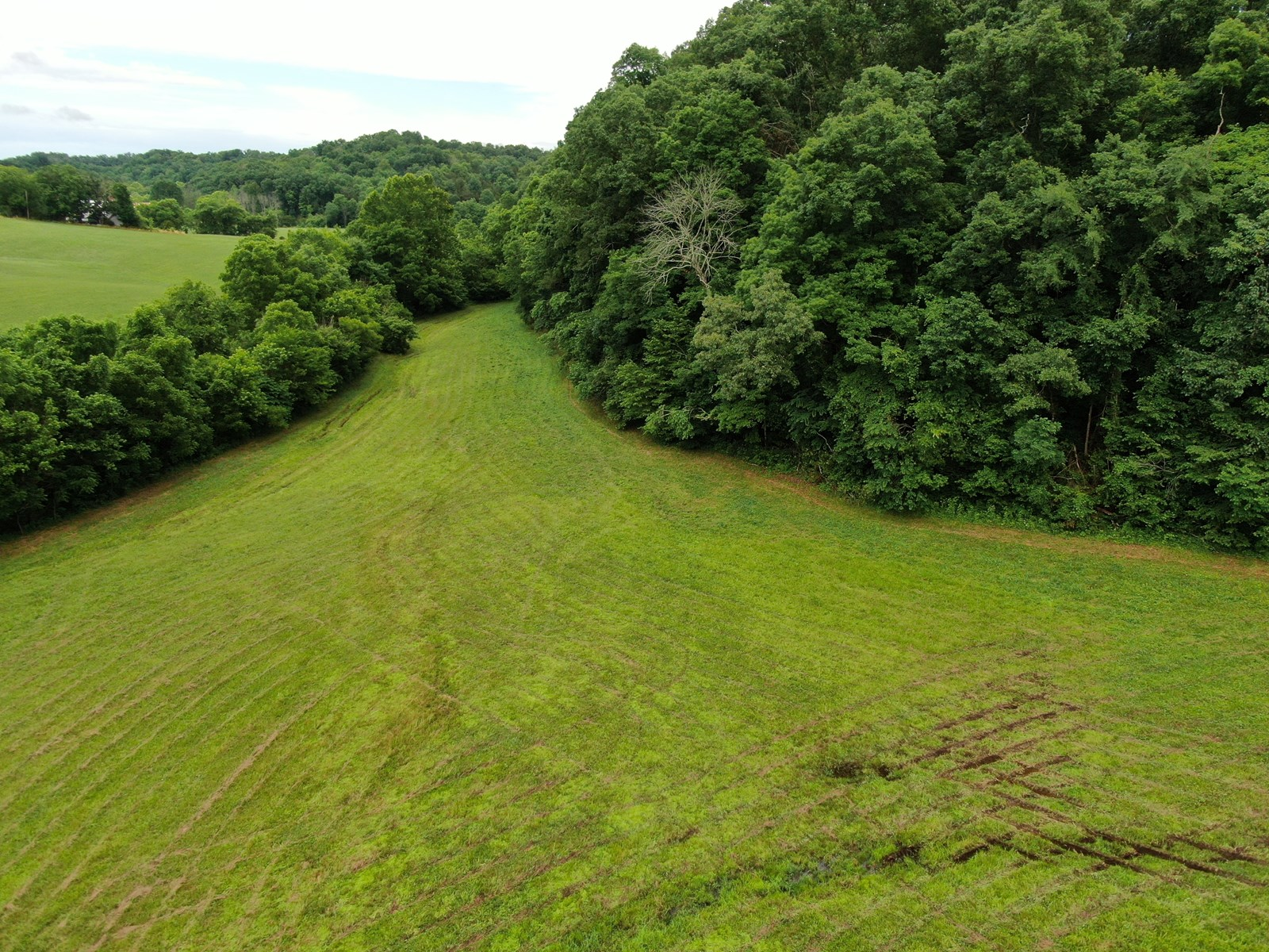 East Tennessee Unrestricted Land For Sale Greene County TN