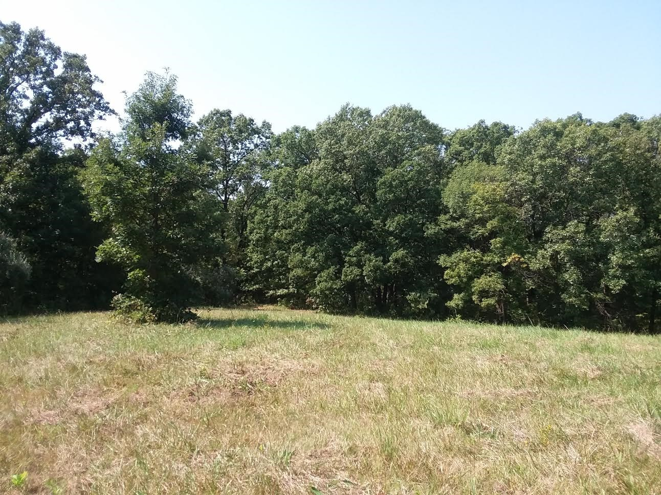 Sold 40 Acres Of Hunting Land In Kirksville Mo
